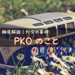 PKOとは? 〜平和維持活動?PKF?自衛隊派遣?わかりやすく解説!〜