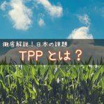 TPPとは? 〜TPPの内容?参加国?メリットとデメリットは?わかりやすく解説!〜